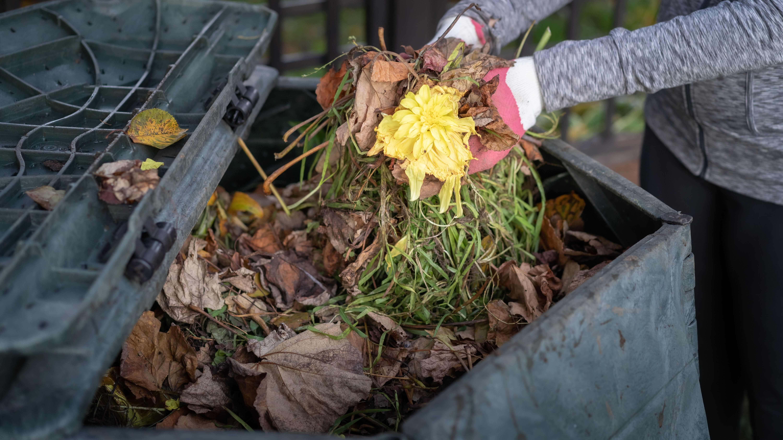 Come scegliere una compostiera