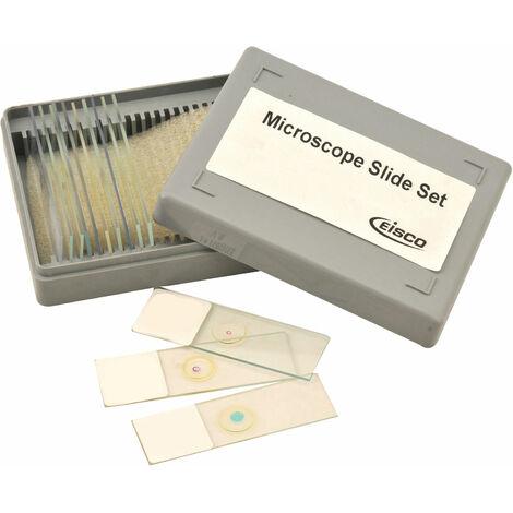 Eisco BI0278 - Beginners Microscope Slide Set of 12