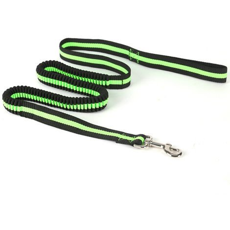 Elastic Retractable Advance Rope Dog Leash,Green