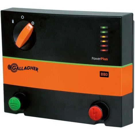 Elettrificatore B80 a batteria 12V o corrente professionale per recinzioni 3km