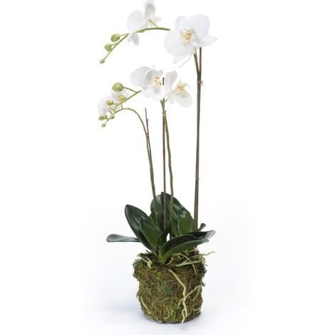 Emerald Artificial Phalaenopsis Orchid 70 cm White - White