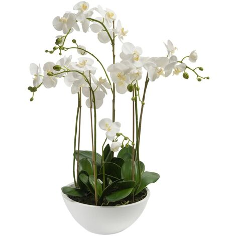 Emerald Orquídea artificial blanca 80 cm 20.335C - Blanco