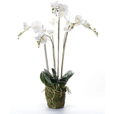Emerald Orquídea artificial con musgo blanca 90 cm 20.355