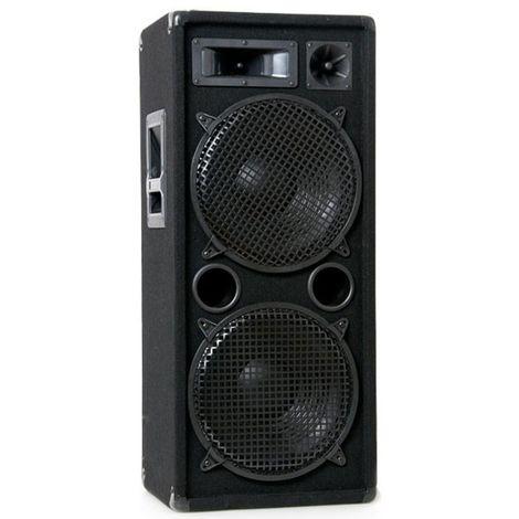 Enceinte de sonorisation 1000W avec 2 plaques basses de 30 cm Liston Pro 212