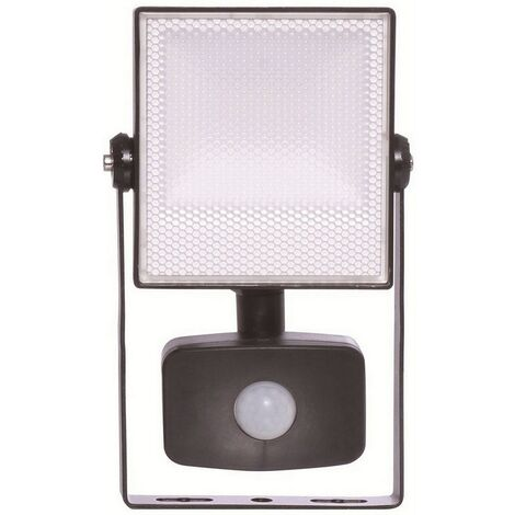 "main image of ""Energizer S10928 LED Flood Light & PIR 10W"""