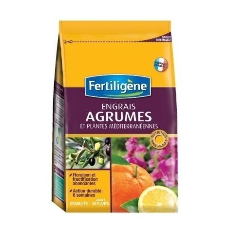 Engrais agrumes bg boîte 800 g