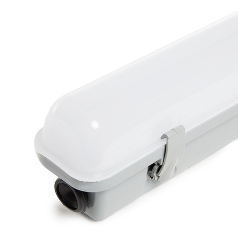 Equipo Estanco LED IP65 120Cm 20W 2000Lm 30.000H | Blanco Frío (RL-IP65-20W-CW)