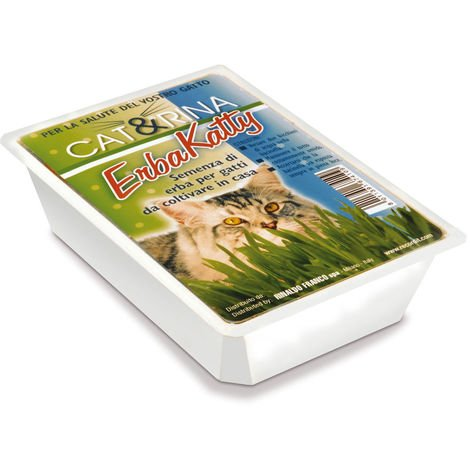 ERBAKATTY Grass cat seed grass for cats to be grown at home