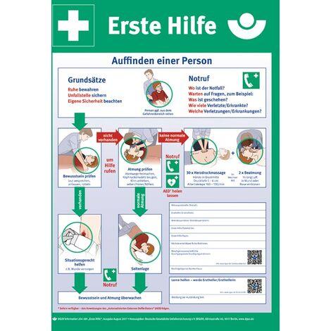 Erste-Hilfe-Plan n.DGUV Information 204-001 L410xB590mm Ku.
