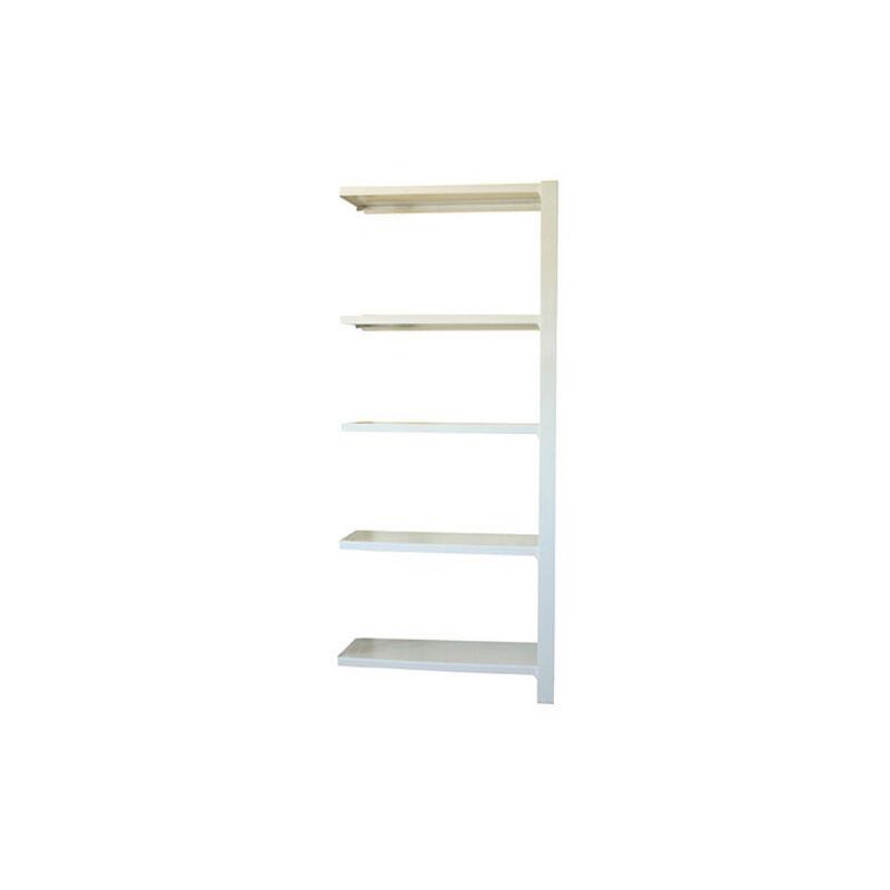 Étagère métallique 5 niveaux - 2100 x 900 x 300 mm - KIT OFFICLICK - WOOD A.M. - Blanc - Blanc