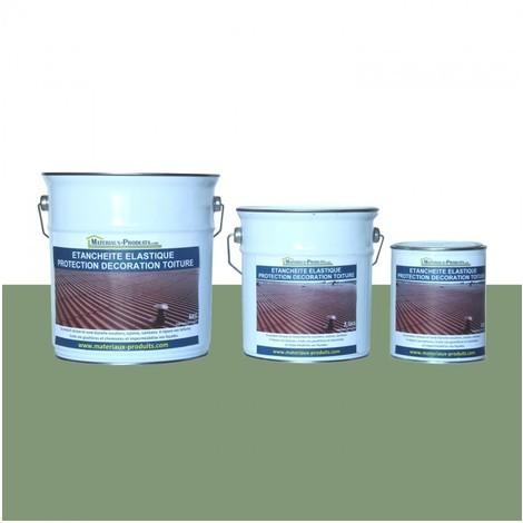 Etanchéité Elastique Protection Décoration Toiture Vert Clair