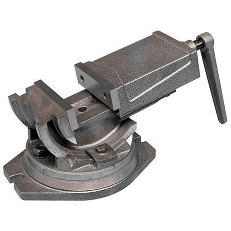 Etau industriel 125 mm 3 axes avec base tournante - IU125 - Holzmann