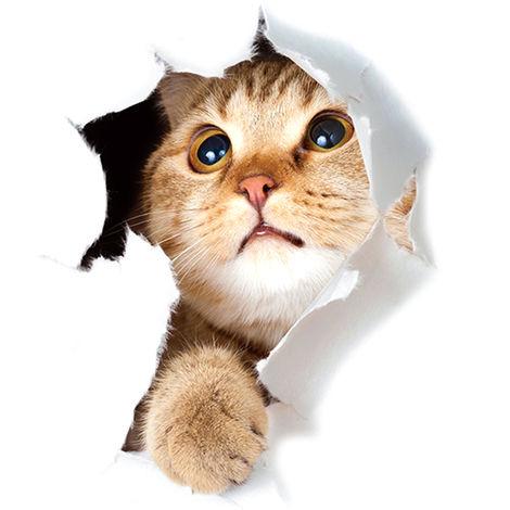 Etiqueta de la pared del gato 3D Super Cute Vivid, 4 #