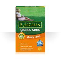 EverGreen Shady Lawn Grass Seed 420g Carton
