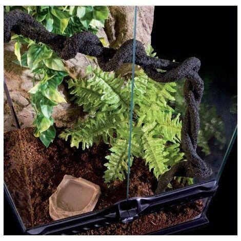EXO TERRA Terrarium foret pluviale équipé M - Pour reptile ou amphibien
