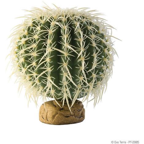 Exoterra barrel cactus medium