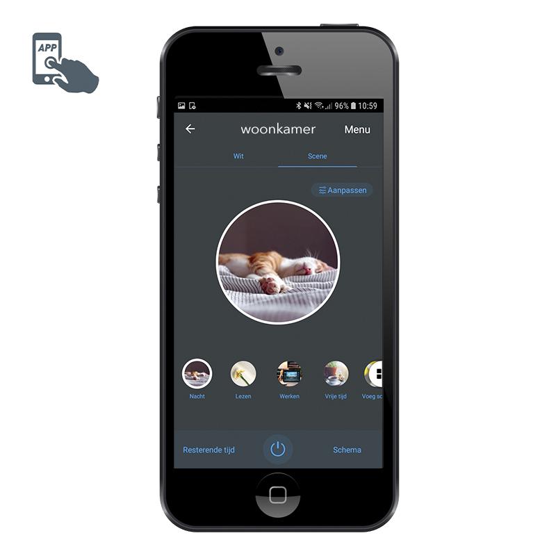Bombilla globo LED regulable Smart app E27 1055lm 2200-4000K