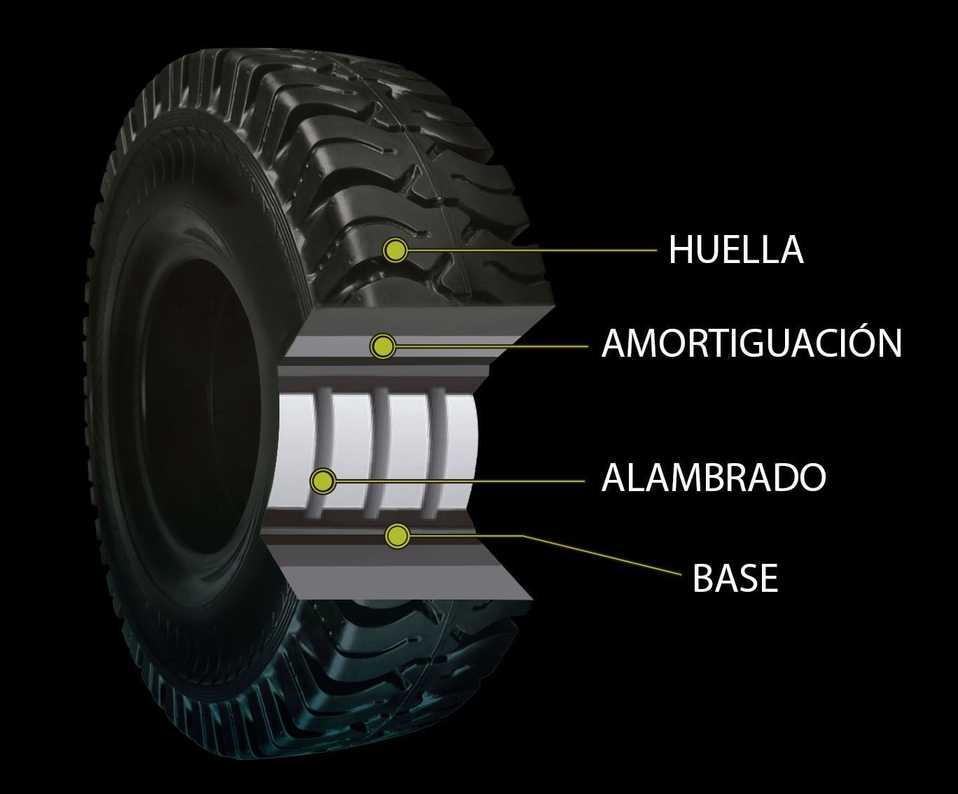 Estructura interna de las ruedas