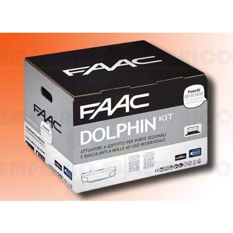 faac automation kit dolphin 24v dc dolphin kit safe 10566544