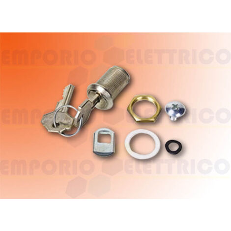 faac release lock with key ( for L and LM containers ) 712805