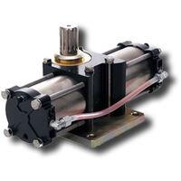 faac unterflurdrehzylinder 750/100° 750cp 108759