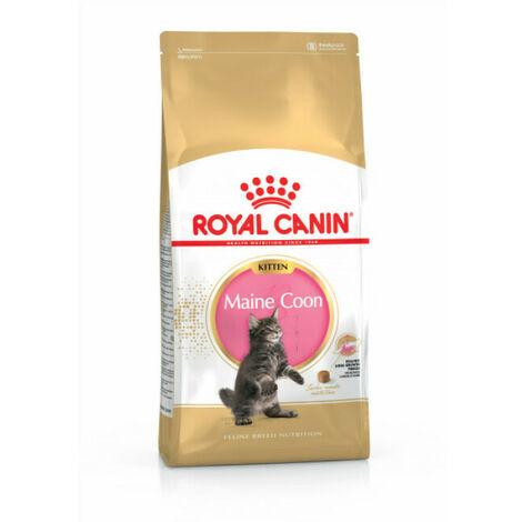 Feline breed nutrition - maine coon kitten 2kg