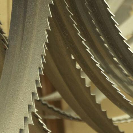 Femi - Hoja de sierra de cinta bimetálica de cobalto 1335x13x0,65 - 3.28.99.48