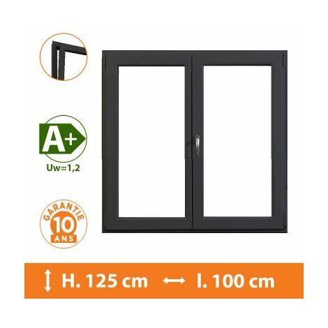 Fenêtre 2 Vantaux Gris - H.125 x l.100 cm - Gris