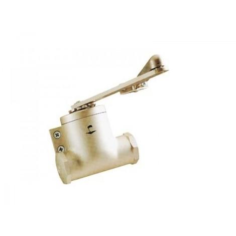 Ferme-porte Classique au look original - force 3 à 5, bras compas - Coloris : champagne - GROOM FERMETURES