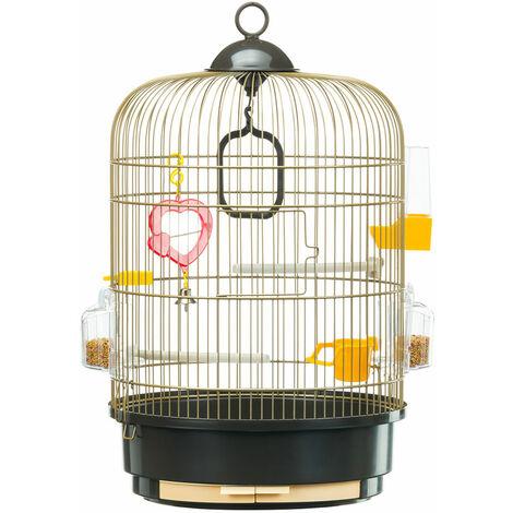 Ferplast REGINA Antique Laiton Petite cage avec finitions antiques pour canaris et autres petits oiseaux. Accessoires inclus.. Variante REGINA - Mesures: Ø 32,5 x 49 cm - Laitonné - Laitonné