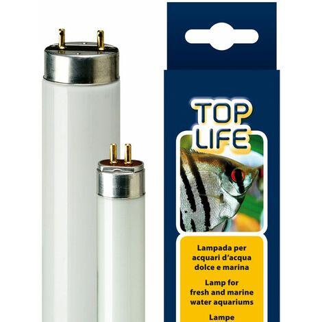 Ferplast TOPLIFE Lampes au néon pour aquariums d'eau douce et de mer. Variante 24W T5 - Mesures: Ø 1,6 x 55 cm -