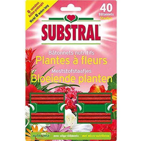 Fertiligène 3989 Lot de 40 Bâtonnets Nutritifs pour Plantes Fleuries