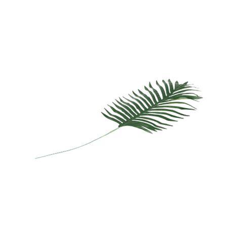 Feuille De Palmier PVC Palmier Vert