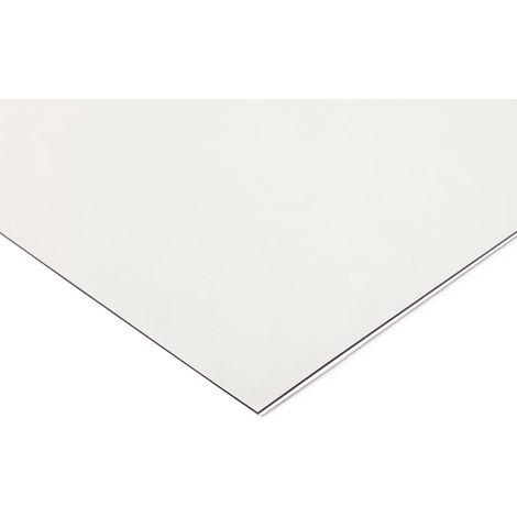 Feuille en polyéthylène téréphtalate (PETG), 1.2m x 620mm x 4mm