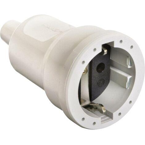 Fiche électrique femelle avec terre as - Schwabe 62224 62224 PVC 230 V blanc 1 pc(s)