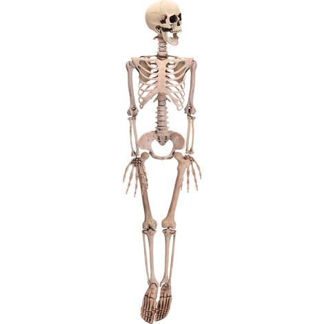 Figura Esqueleto Halloween 90Cm - NEOFERR