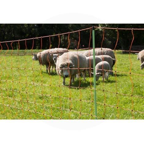 Filet cloture electrique mouton - Gallagher - 90cm