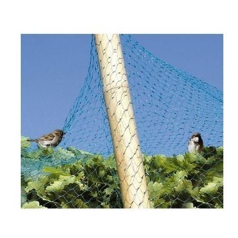 Filet vert anti-oiseaux bg 6 x 4