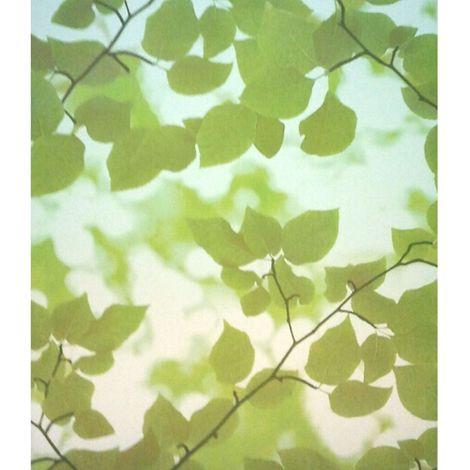 Film décoratif pour vitre vitrostatique Feuillage - 150 x 45 cm - Vert - Transparent