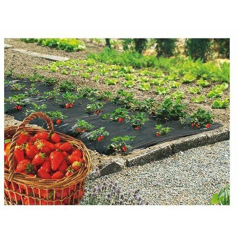 Film paillage fraises 1,40x10m ref 100050