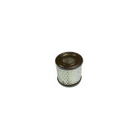 Filtre a air adaptable BRIGGS ET STRATTON 392308