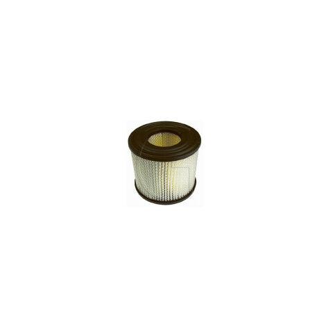 Filtre a air adaptable BRIGGS ET STRATTON 393957, 390930