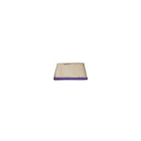 Filtre a air adaptable BRIGGS STRATTON 397795, 395027