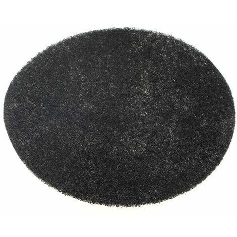 Filtre charbon pour Friteuse Delonghi