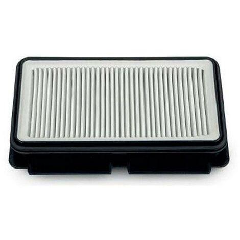 Filtre HEPA (ZR902501) Aspirateur ROWENTA, TEFAL
