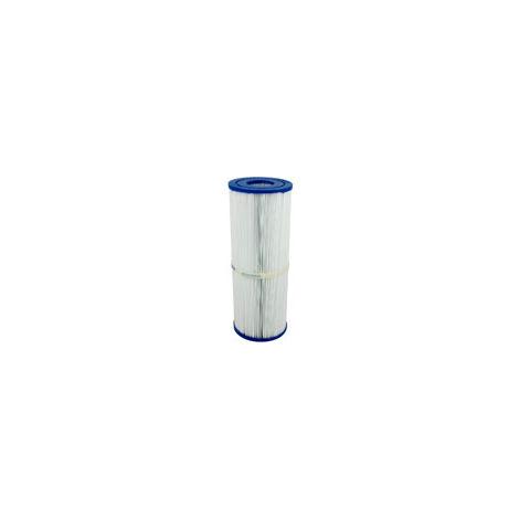 Filtre spa (40506 / C-4950 / PRB50-IN / T-4950 / FC-2390) Classique