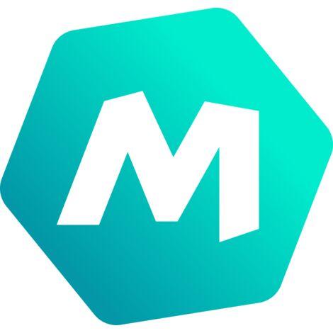 FIXSOL - Le lot de 10 petites agrafes métalliques - Accessoires de fixation