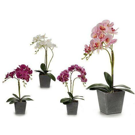 Fleurs décoratives Orchidée Plastique Pot Gris (18 x 53 x 28 cm)