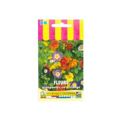 Fleurs grimpantes en mélange - 5g