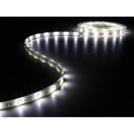 FLEXIBLE A LED - BLANC FROID 6500K - 150 LED - 5m - 12V (RI6842)
